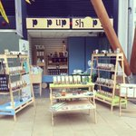 Birdhouse Tea Company pop up shop in Winter Gardens @sheffcitycentre until July 14th! #iloves #sheffieldissuper http://t.co/UWM4FW90q1