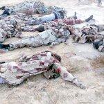"""مصر: قصف جوي عنيف لمواقع المسلحين في سيناء غداة يوم دام.. وارتفاع قتلى """"داعش"""" إلى 123 http://t.co/Ra2vQbuKHd http://t.co/5sHfplC5zK"""