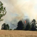 UPDATED: Homes evacuated as wildfire rapidly spreads near #Nanaimo http://t.co/nDqbwslm0W http://t.co/mLAQn9wZ78