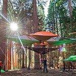Sospesi nel bosco: in campeggio con la tenda-amaca http://t.co/fCOPZZRtW6 http://t.co/tHrDJr5Gsa