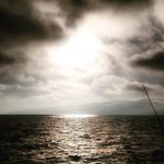Another tweet in #samo santa monica #losangeles #beach - http://t.co/CdcAKabgWY http://t.co/IdZefJlJOo