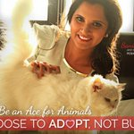 RT @PetaIndia: Tennis champion @MirzaSania stars in a campaign with her rescued cat for PETA. http://t.co/3lWtved7mr  #AdoptDontBuy http://…