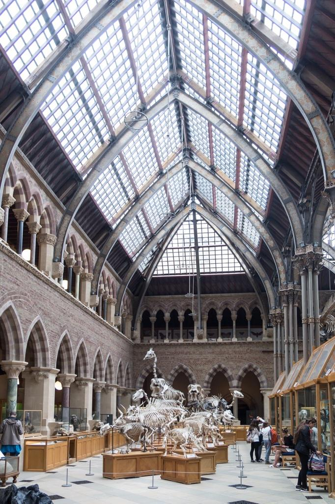Quick pic of @morethanadodo interior. They get my vote #museumoftheyear http://t.co/IXebpTJI8P