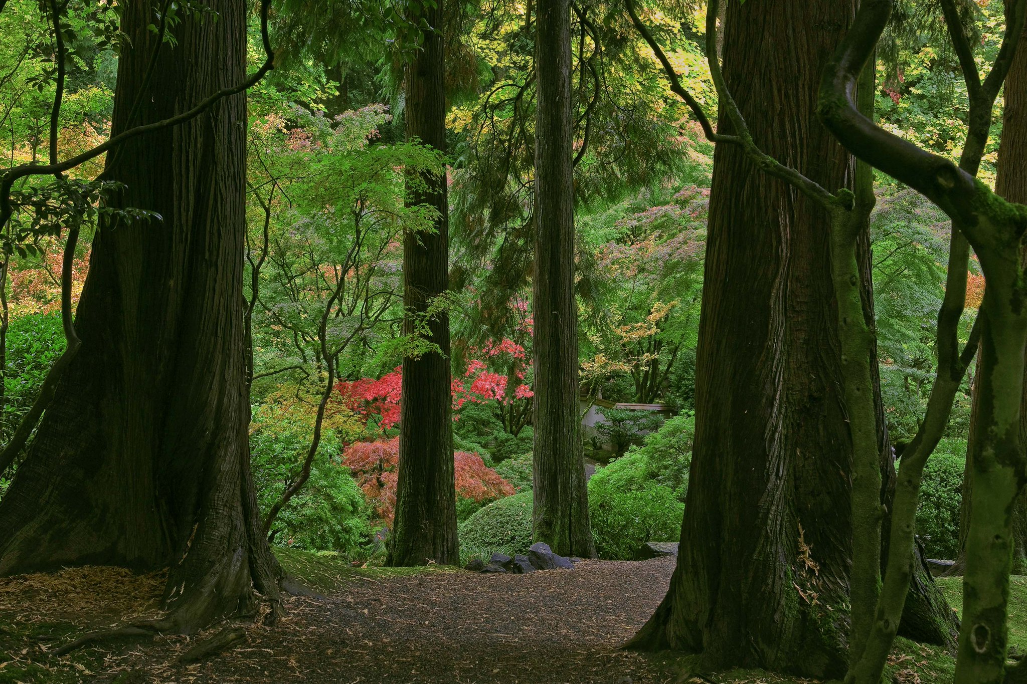 Did you know June was #GreatOutdoorsMonth? Celebrate close to home with a trip to WA Park and the Garden. http://t.co/rLZw2q25bt