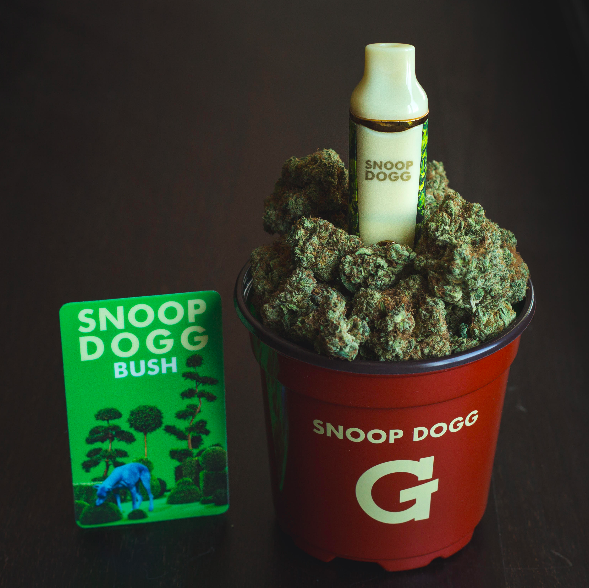 #puffpuffpasstuesdays get #BUSH album free wit ur #BUSH #gpro @gpen now jacc !! http://t.co/GiJYhEIG6c http://t.co/SMWI34UZij