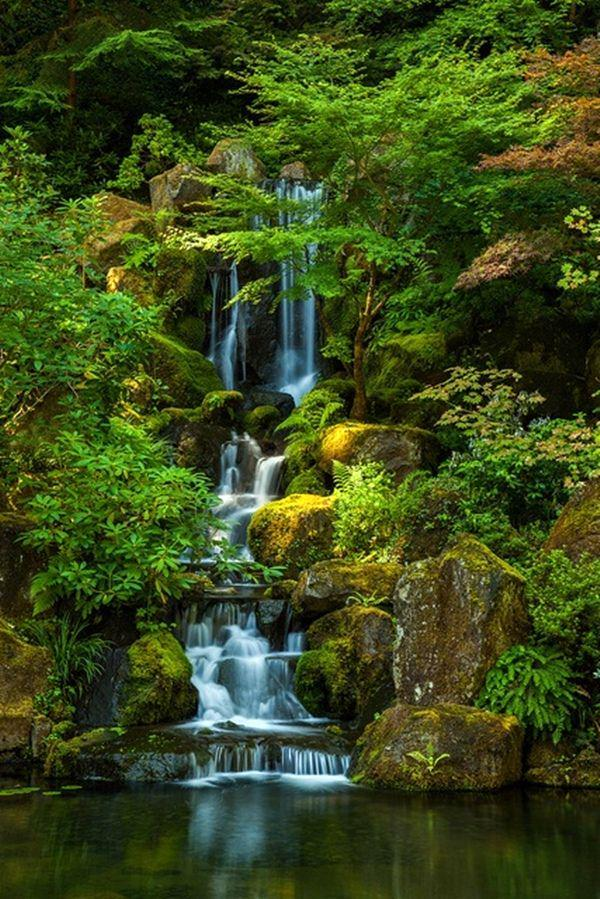 The mosaic of summertime greens are calming & peaceful. @spotenthusiast: Portland japanese garden | #Portland #pdx http://t.co/2OhRCcyoo3