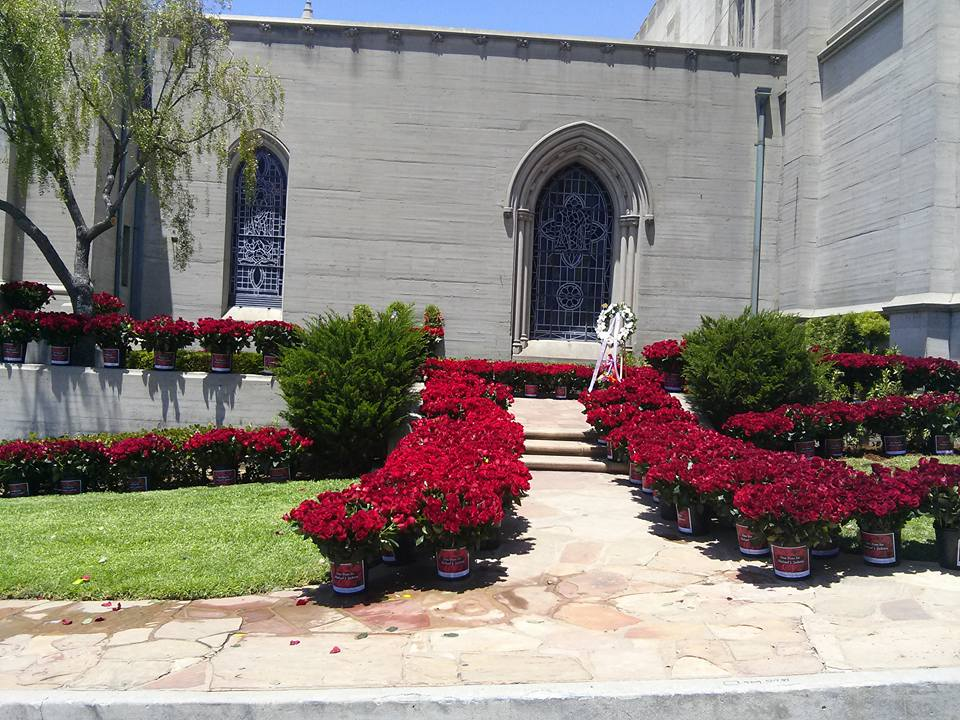Love coming from all around the world for you: #6YearsWithoutMichaelJackson @OneRose4MJJ http://t.co/4DffGF9jf5