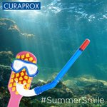 Get in the mood for summer with Curaproxs selfie competition, co-ordinated by Click Tap Media http://t.co/V1SuoLTQ4t http://t.co/6tmu4hdqFN