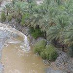 هطول أمطار متوسطة على ولاية الرستاق جعلها الله أمطار خير وبركة وسعادة http://t.co/rE9sjXXP5W