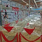 ¿Quién no ha ido alguna vez corriendo a http://t.co/ZgcoCceg69 a por ropa de #SanFermin? ¡Que no te pille el toro! http://t.co/yV3an93MIh