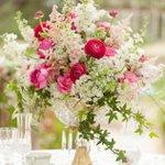RT @nitayone60 @wedbazaar @CGomes53 Centros de mesa para boda vintage en fucsia y blush http://t.co/LyXuCnh3Uh http://t.co/G3aSOosBLN