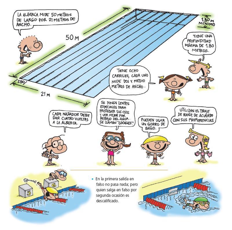 escuincles la #natación se desarrolla en una piscina con medidas ...