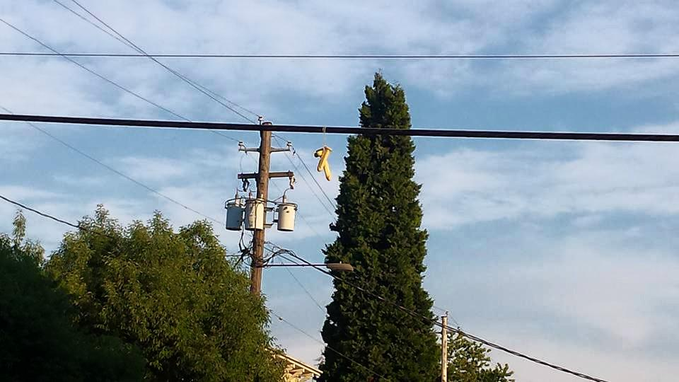 Throwing dildos over the power lines has become a thing in portland. #keeportlandweird They're all over town. http://t.co/FIc1COao27