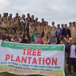 Blessings to all the Green S members for planting 1278 trees at Melbourne, Australia  #MSGTreePlantationDrive http://t.co/8yg8qc9237