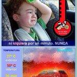 Dejar a tu hij@ solo en el coche con este calor puede ser fatal Un solo minuto basta para lamentarse toda la vida https://t.co/8bu9mcRg87