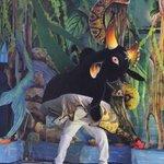 Caprichoso supera temporal e leva o 50º Festival de Parintins: http://t.co/B4B67efqVH http://t.co/WqE3jWW4v5