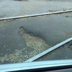 @Rudakov_i_a @MP_Blago63 @dorogisamara уважаемые отрезок ул.Галактионовской от венценко до ленинградской в такихдырах http://t.co/qBruqzdFaW