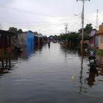 Guasdualito, en el Alto Apure; inundado totalmente por falta de diques/canalización del río Sarare. Inversión nula! http://t.co/mVlX0vysCM
