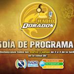¡Martes de #RadioDorados! Sigue nuestro programa oficial de 3 a 4 PM por la señal de @RadioSinaloaFM. #HazlaDePez http://t.co/M4MXy2UO02