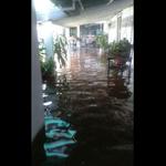 El Amparo y Guasdualito del estado Apure están inundados, se puede repetir tragedia dell 2002. 1000 flias. afectadas http://t.co/sGkfNiA5NK