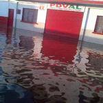 Sin agua ni alimentos, mas de 1000 familias en Guasdualito. SOS. No llega ayuda nacional http://t.co/eDA4822Dk6