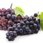 La uva previene la aparición de las arrugas http://t.co/VwsTgbm6Pb (vía @eme_demujer) http://t.co/cjNOhaCZ3z