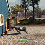 Goat Simulator is coming to PS4 and PS3 on August 11th: http://t.co/syIMG8ONsa Fly. Headbutt. Explode stuff. http://t.co/44gp7aTrC1