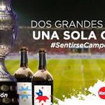 Hoy nosotros levantamos la Copa. #ARG #SentirseCampeón #Chile2015 http://t.co/blTW00QJ3x