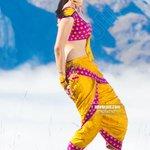 RT @idlebraindotcom: Actress Rakul Preet Singh photo gallery http://t.co/xHaJn3RMK3