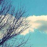 Hasta el cielo se tiñe de celeste y blanco. Vamos #Argentina!! Envianos tu mensaje usando #VamosXlaCopa http://t.co/GbeJ7Ezc3K