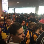Only about 2 million peeps here at #dunedin airport to welcome @Highlanders home. http://t.co/kyiUjC3Vkp