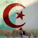 En direct dAlger 5 juillet 1962 - 5 juillet 2015 Bonne fête nationale â tous les Dz ❤ #TahyaDjazaïr http://t.co/DCm0Vz2SF4