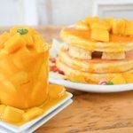 カフェ アクイーユ、ボリューム満点!マンゴーづくしのパンケーキ発売中 - 平日ディナー限定メニューも - http://t.co/OeB6vo4s3e http://t.co/RUq1FYprQr