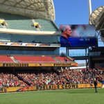 The shine is shinning for fallen sporting hero @theTiser @Adelaide_FC #WeFlyAsOne http://t.co/cyvmX2Qbgf