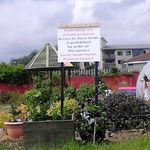 Local families have been locked out of a community garden by a local Catholic church http://t.co/CxecrOZxzI http://t.co/XQMQ6ODKRY