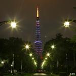 FIFA女子ワールドカップ2連覇を目指すなでしこジャパン(日本女子代表)を応援するべく、東京タワーが青・ピンク・白の3色にライトアップされました。 ※東京タワー(日本電波塔株式会社)、株式会社石井幹子デザイン事務所協力 http://t.co/XOOKL6IhR6