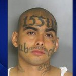 A gang member has died after he tried to gold plate his genitals... http://t.co/EdueKXRFan http://t.co/ZcjJcnyfeT