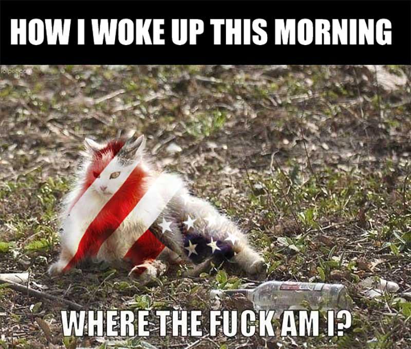 How I woke up this morning...