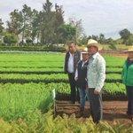 Uno de los 21 viveros de #Probosque_ en #VillaGuerrero. Para reforestar el #EdoMéx. @eruviel_avila http://t.co/drAY4zdMNs