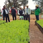 Los 21 viveros de @Probosque_ se producen 6 millones de arbolitos para la reforestación #Edomex 2015. @eruviel_avila http://t.co/MGL64510ef