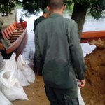 Así se acarrean sacos con arena para sellar fisuras del dique norte paparar entrada d aguas del Sarare a Guasdualito http://t.co/DDSLyisMQU