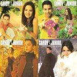 """Felicidade era poder trocar as capinhas do cd """"Sandy & Junior - Ao vivo"""". ???? http://t.co/t2E7xm2Yf0"""