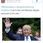 The now-deleted tweet from Donald Trump attacking Jebs immigrant wife. http://t.co/ZdE5AyPTec