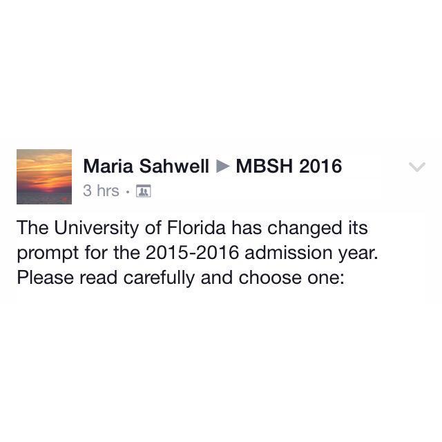 uf undergraduate essay 2013