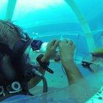 Jardim submarino: frutas e verduras cultivadas no fundo do mar. http://t.co/4i5GVifPzn http://t.co/84u4HyPxHc
