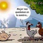 #FelizLunes Sigue haciendo mucho #calor, asi que mejor afrontarlo con humor y mucho líquido http://t.co/7KjxLAdHd4