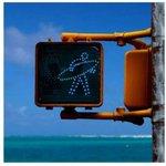 La chaleur nous donne des hallucinations... http://t.co/TLKPEYAvIG