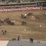 Horse death under investigation at Calgary Stampede - some say precautions arent enough #yyc http://t.co/tQMZSzhTQh http://t.co/RLjJ0t2yaE