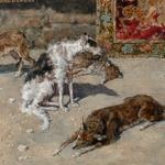 #FortunyAlDetalle. Cuatro perros enjutos descansan frente al puesto de tapices en el mercado de Tánger. http://t.co/Zk3N9WfQcX