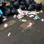 Every bin day. We need wheelie bins, @bathnes. Leaving bags out like this is ridiculously stupid. http://t.co/E83YERh16L